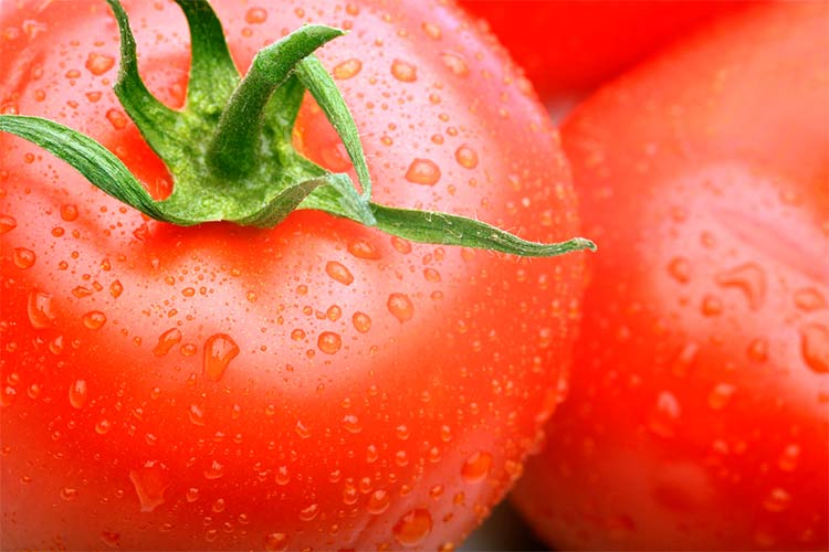 Великі помідори: секрети вирощування