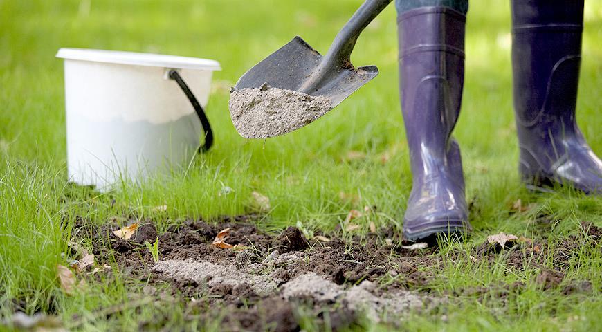 Застосування золи для удобрення рослин