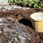 Як і навіщо проводять вапнування грунту на городі і в саду?