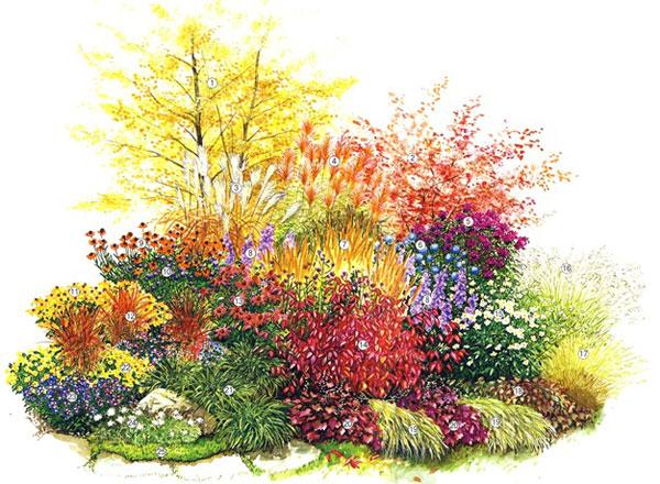 Схема квітника з декоративними кущами