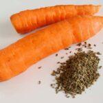 Як краще обробити насіння моркви перед посівом у відкритий грунт?