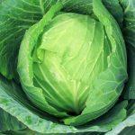 Чим підгодовувати капусту, щоб виросли тугі і смачні качани?
