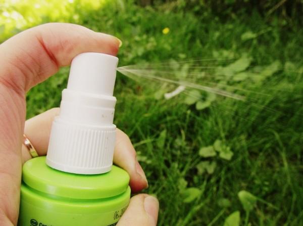 Як позбутися від комарів на дачній ділянці