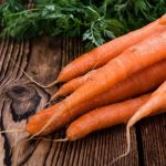 Посадка моркви на грядках під зиму – як правильно садити?