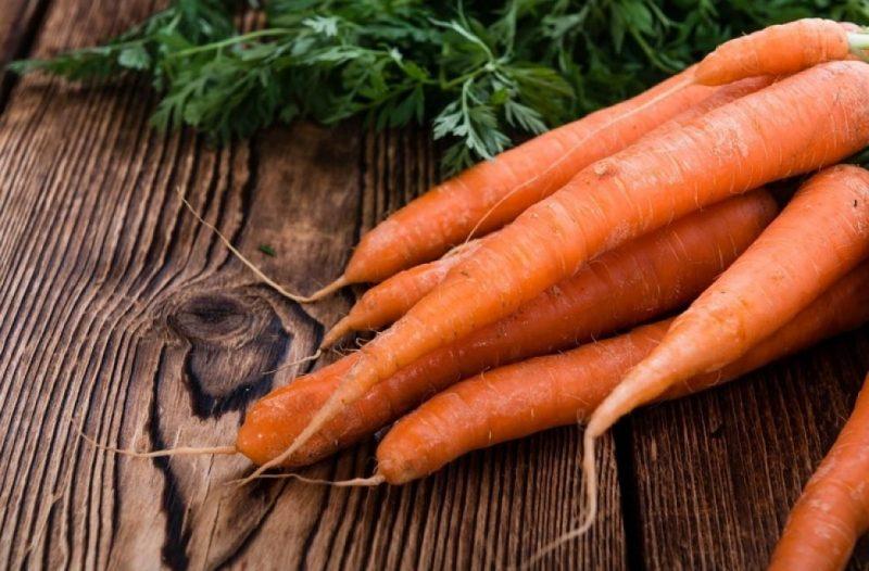 Посадка моркви на грядках під зиму - як правильно садити?