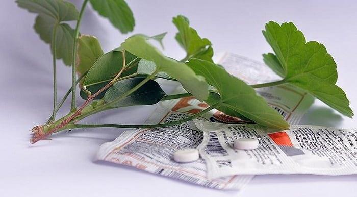Інструкція по застосуванню бурштинової кислоти для рослин